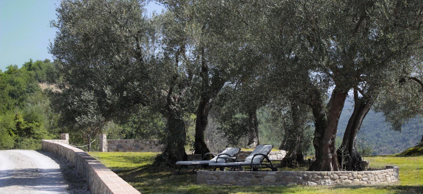 Residenza Agrituristica del Sole Ulivi